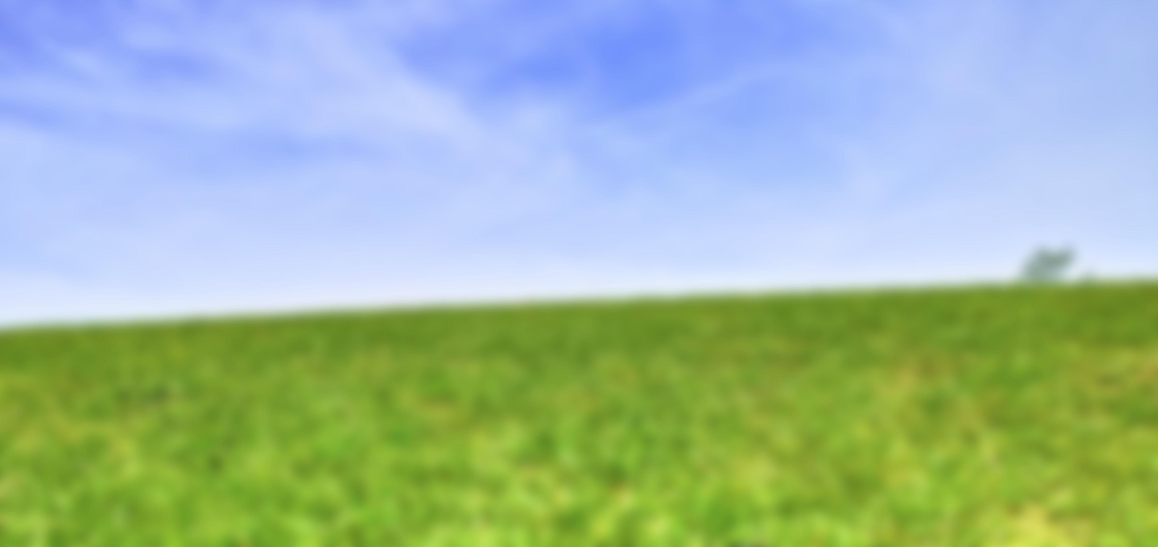 grass-blur